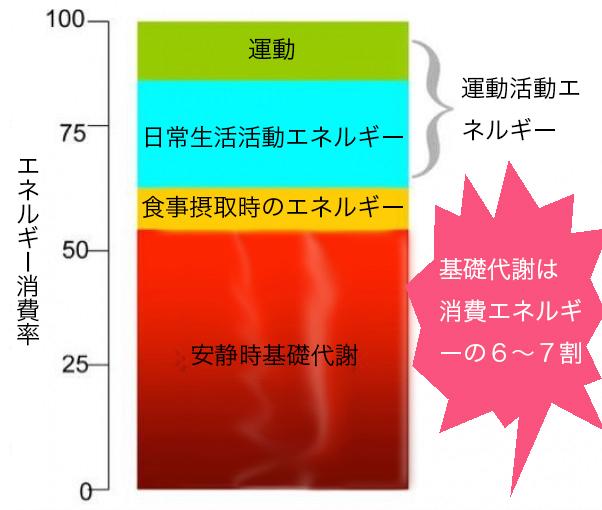 基礎代謝日本語のコピー