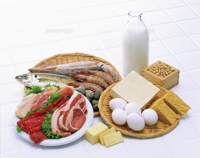 タンパク質の食べ物
