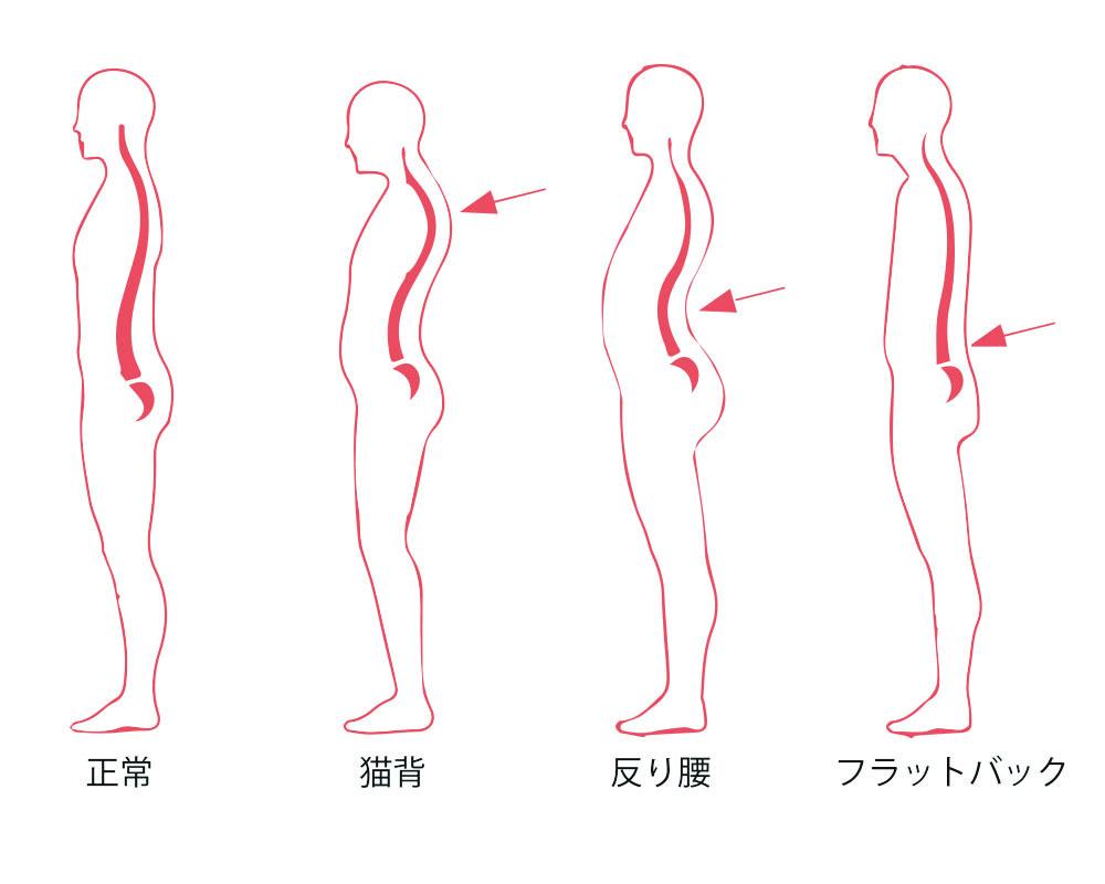 4つの姿勢