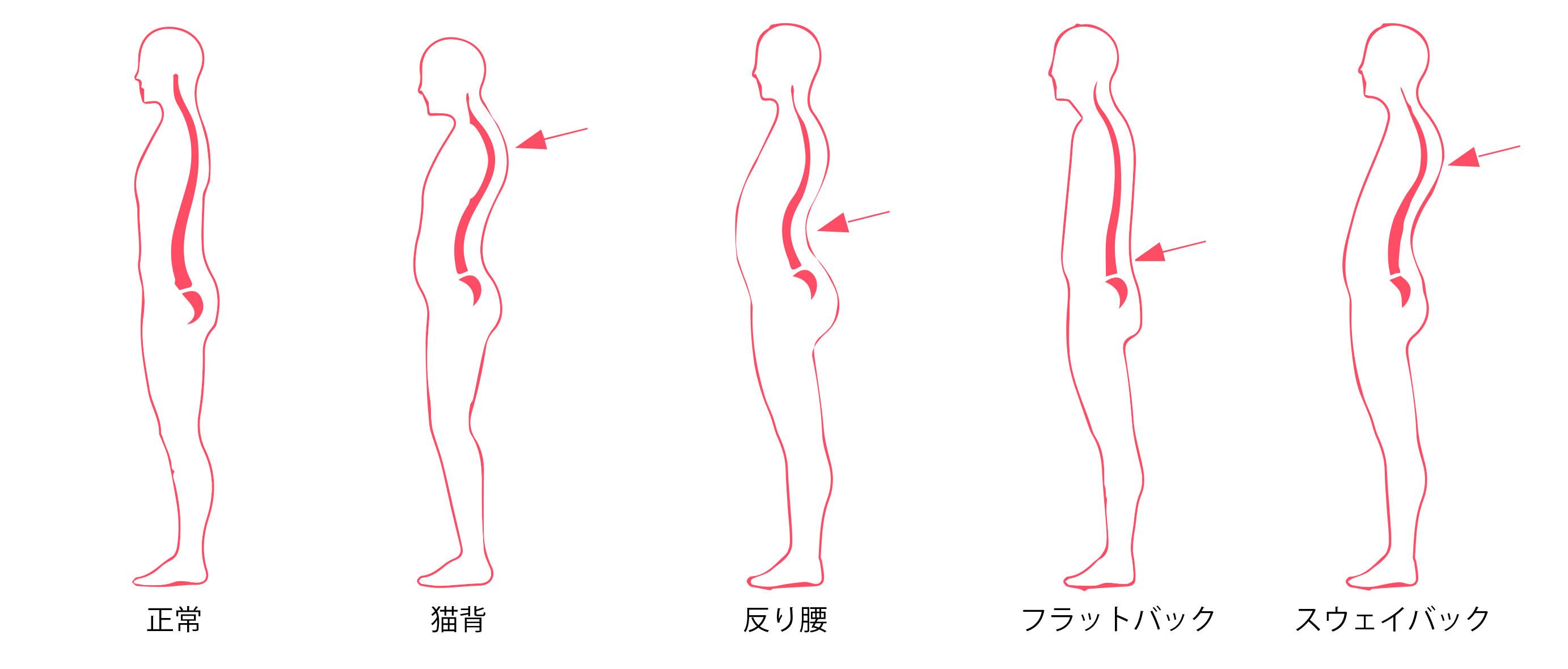 姿勢のタイプ