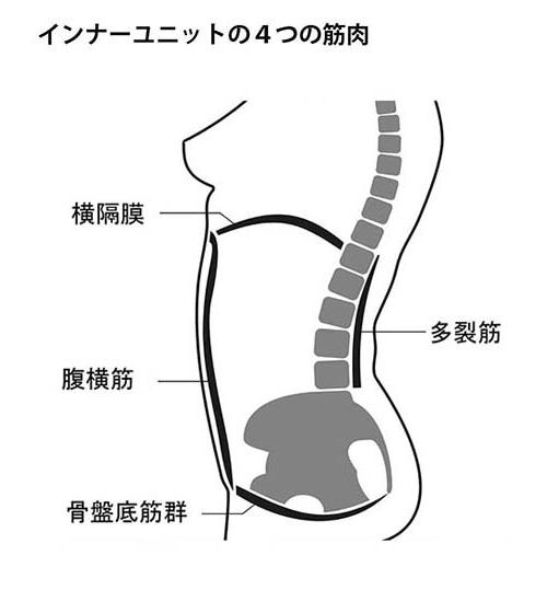 インナーユニットの4つの筋肉