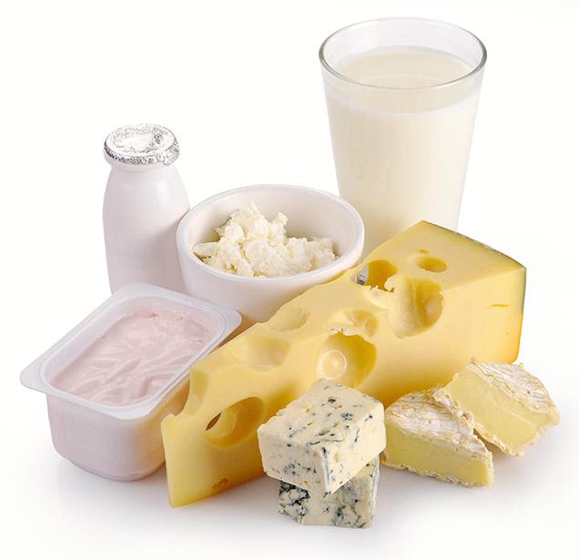 cheese&milk&yogurt