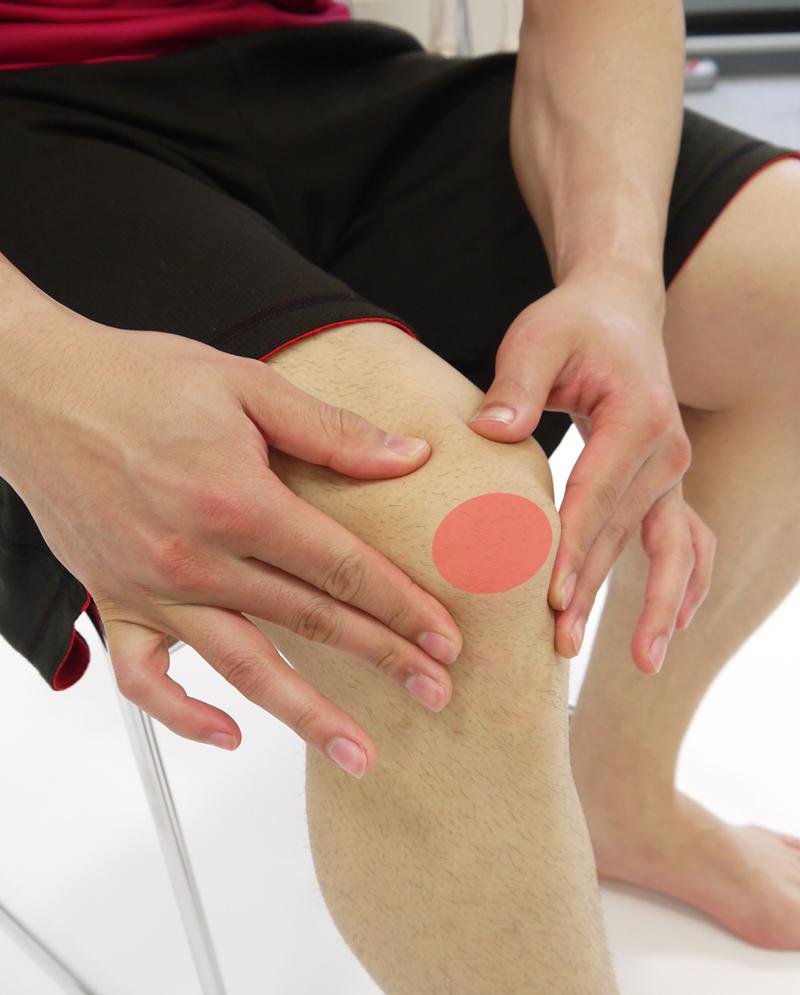 膝のお皿(赤丸)周辺の柔らかい部分を優しく押したり揉んだりしてみましょう