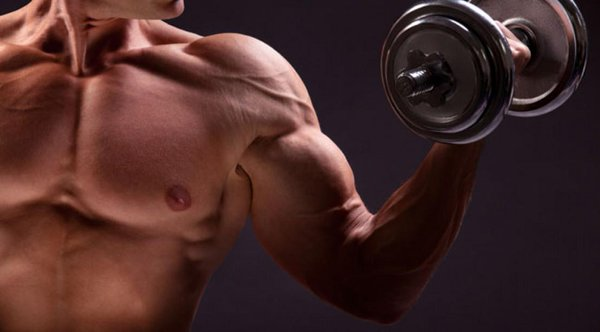 上腕二頭筋を鍛える筋トレ3選!ダンベルやチューブで鍛える方法