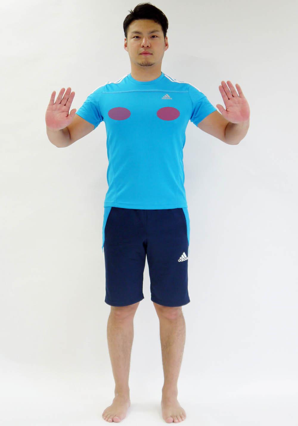 大胸筋中央のコピー