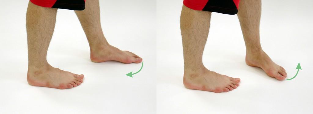足先引き寄せ運動1