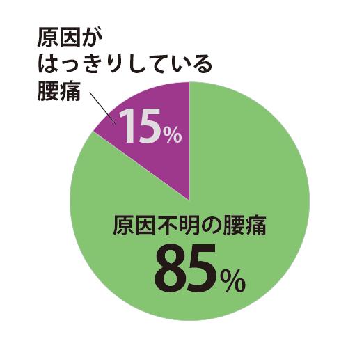 85パーセント