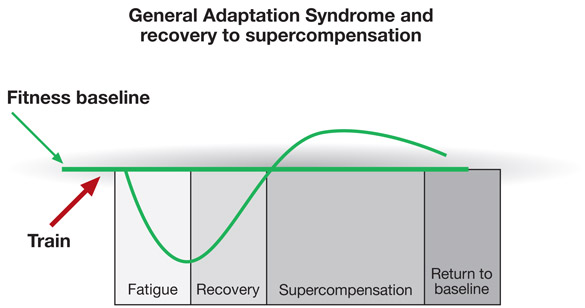 gas-and-recovery-chart-en